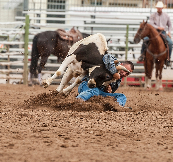 rodeo0431